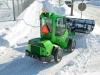 Snö blad_2